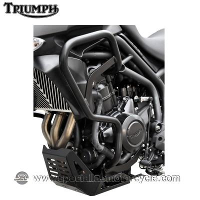 Paramotore Ibex Triumph Tiger 800 XC Black