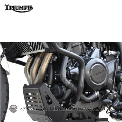 Piastra Paramotore Ibex per Triumph Tiger 800
