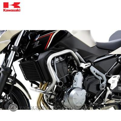 Paramotore Ibex Kawasaki Z650 Silver