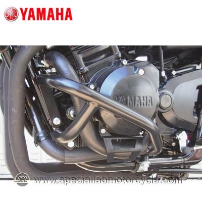 Paramotore Fehling Yamaha FZS 600 Fazer