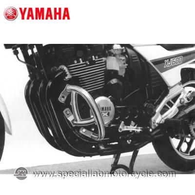 Paramotore Fehling Yamaha XJ 550 / 900